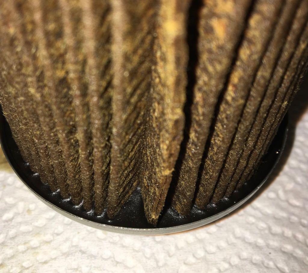 Cut Open] Motorcraft FL500S - 5174 mi - Bob Is The Oil Guy